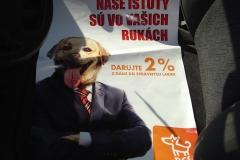 charitativna-akcia-oz-pes-v-nudzi-05